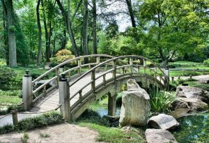 A wooden bridge in a park