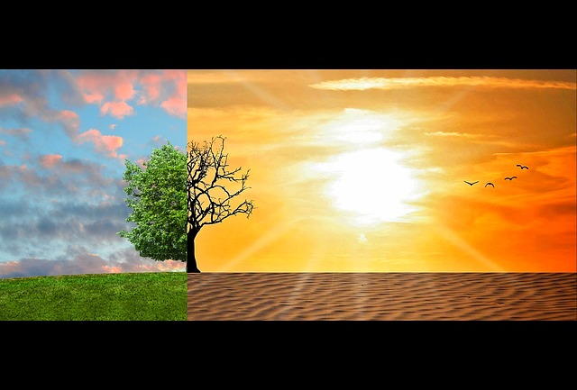 Moving to a warmer climate- how to adjust