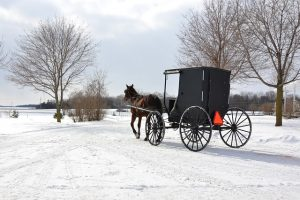 An old horse cart in winter.
