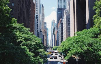 5 things Canadians who moved to NYC miss most