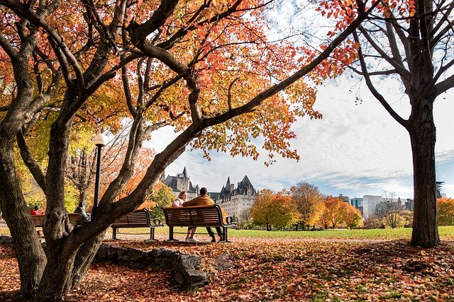 Couple sitting on a bench in the park and talking about starting a small business in Ottawa.