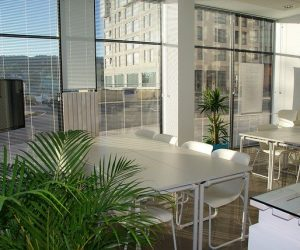Moving your business from Florida to Canada – tips for finding a new office space